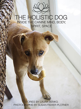 the holistic dog a book by Laura Benko